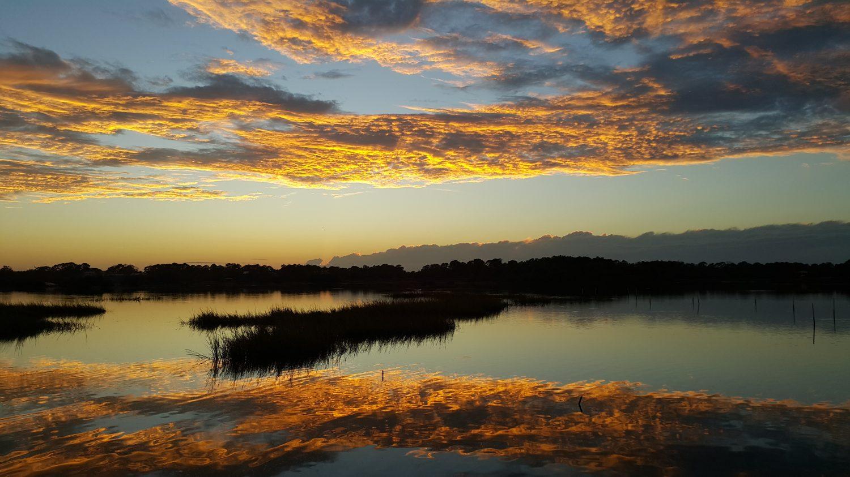 Coral Dawns
